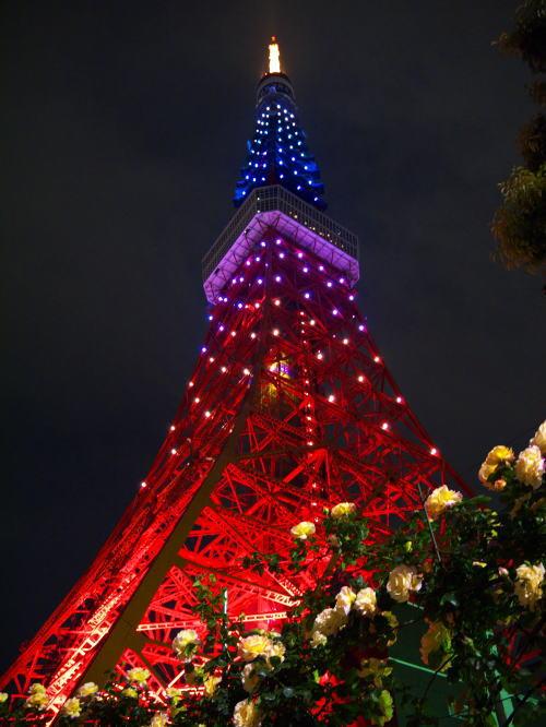 夜の東京タワーの写真2